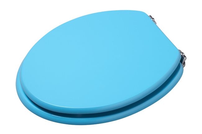 image of croydex blue coloured toilet seat wl522224