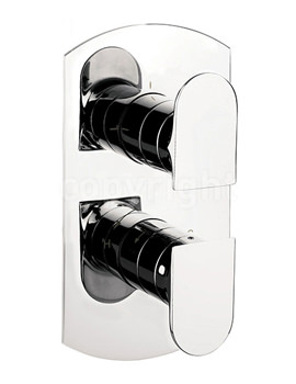 Modest Portrait Thermostatic Shower Valve With 2 Way Diverter