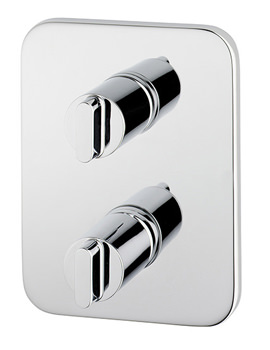Moments Faceplate And Handles With TT Valve