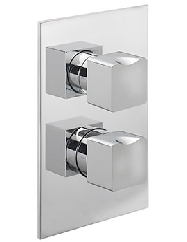 Matisse Concealed Thermostatic Shower Valve
