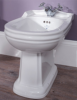 Balasani White Freesatnding Back To Wall Bidet - BSBID1THWHIBL