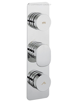 Dial 2 Control Shower Valve With Pier Portrait Trim