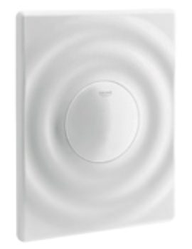 Surf Wall Mounted Alpine White Flush Plate
